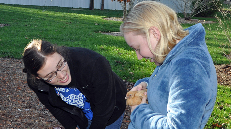 A petting zoo was one of the activities to help students destress.