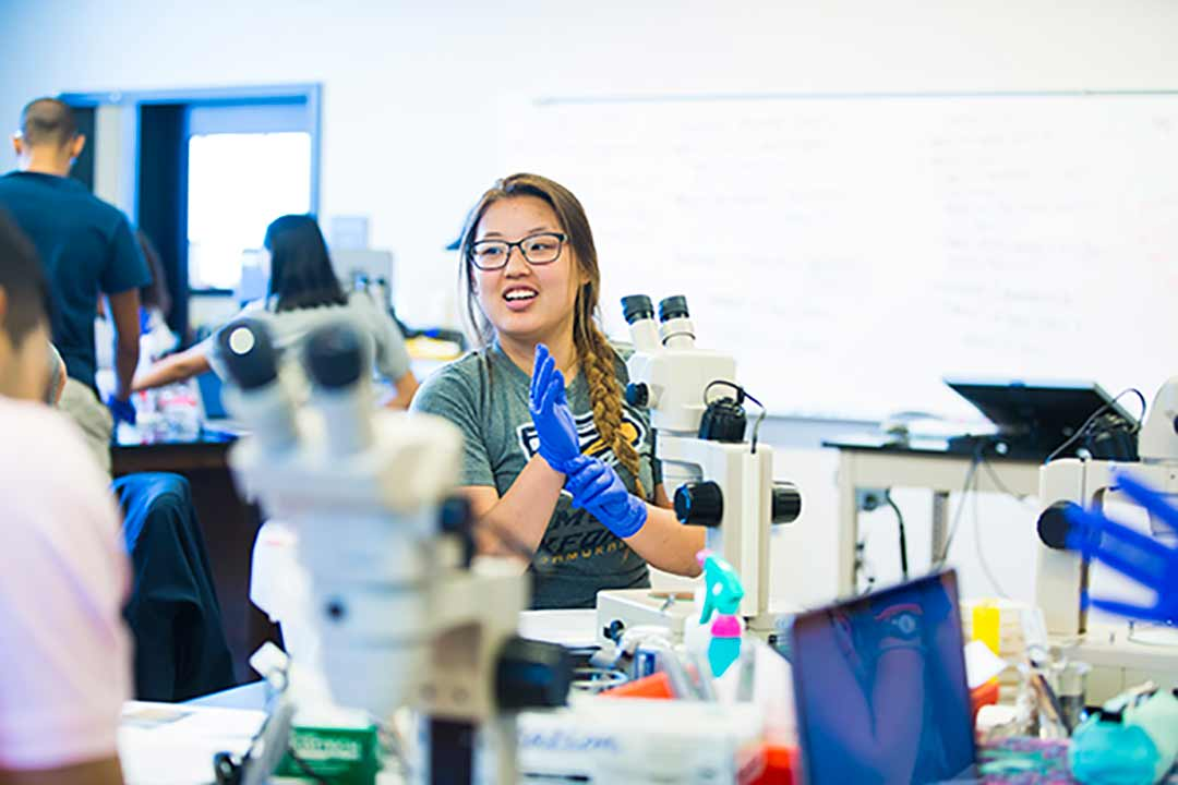 A student works in the biology lab.